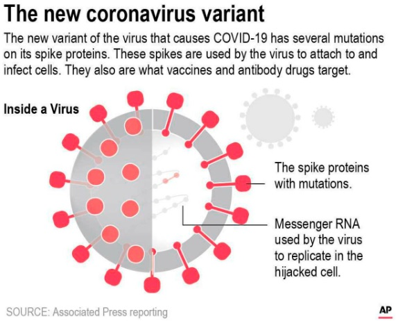 The emergence and spread of Coronavirus variants – CAN VACCINES FAIL?