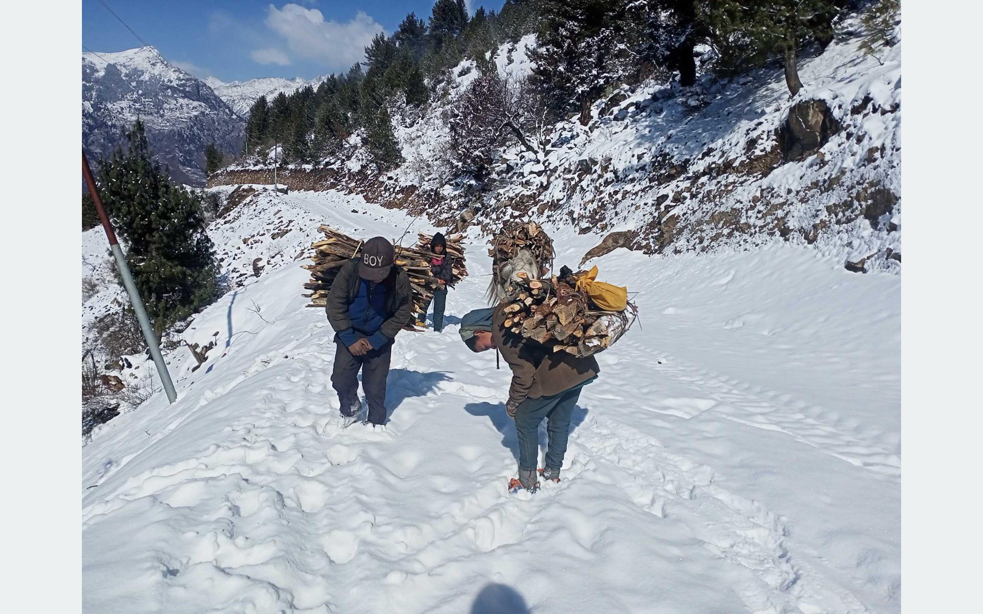 Humla children selling firewood amidst snow to supplement family income