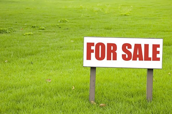 Preparation of Land Market begins for real estate transactions to be done from home