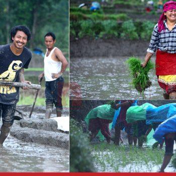 Busy Farmers of Bungamati