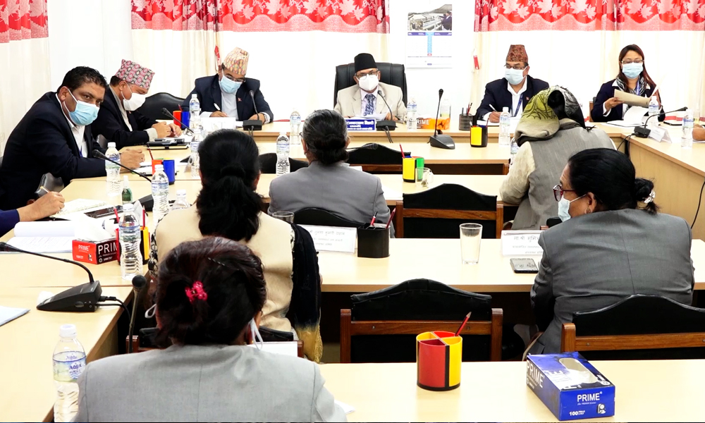 Parliamentary Committee directs govt to send aspiring Nepali workers to SK pronto