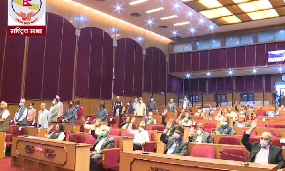 National Assembly endorses 2 bills related to budget amid protest